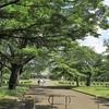 写真保存を兼ねたブログ 5月徒然 風薫る 都立小金井公園 江戸東京たてもの園(1)