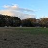 たんぽぽ村キャンプ場
