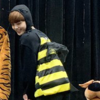X1 ヒョンジュンミツバチが可愛すぎる!弱肉強食の世界を戦うハチさんw w w