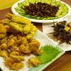 石川県金沢市にだけ生息している外来種?スジアカクマゼミを採って食べる観察会
