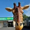 旭山動物園(まとめ)