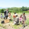 フィールドワーク〜自然農の畑に大豆を蒔く〜