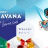 【茶ニュース】2016年10月:日本で販売開始されるTEAVANAとは?メニューや日本での展開、海外店舗の様子などを徹底レポ!