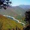 自然とともに暮らしてきた昔の日本人から繊細な美的センスを学ぼう!
