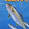 海のぬし釣り