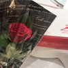 ピンク!airClosetで4月にレンタルした3着