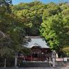 走り湯と伊豆山神社は本気のパワースポット