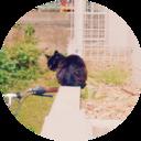 ハヤリズム -モノとコトのブログ-