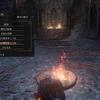 【ダークソウル3】闘技場のシステムについて【DLC攻略】