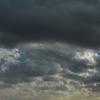 Nikonのデジイチ「D3000」で2016年12月12日までに撮影した写真です。サザンカとカンツバキを見分けられないです