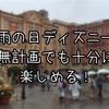 【インパ日記】初めての無計画ディズニー~天気はもちろん雨~