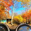 バイクで紅葉キャンプ 笛吹小屋キャンプ場
