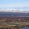レイキャビク現地ツアー最大手「reykjavik excursions」の対応がありえない!(アイスランド