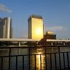 隅田公園の灯籠流しを見に行ったのですが……