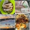魚食と太陽を感じる日々。 それだけ。