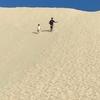 【子連れ海外旅行】オーストラリア ブリスベン モートン島