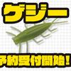 【EVERGREEN】スローシンキングの虫系ワーム「ゲジー」通販予約受付開始!