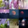 アメブロ、インスタグラム、Facebookに作家「STM_kurosawa」さんの詩をご紹介しました。