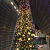京都駅ビルのツリーのお話。