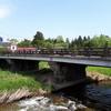 中津川が岩手・盛岡にもあります。秋には鮭が遡上します。