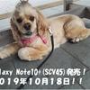 【父ちゃんの休息】 au : Galaxy Note10+(SCV45)が発売決定!!