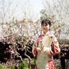 桜と梅が綺麗、上海古猗园でのポートレート撮影会・那年花开月正圆