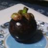 桃谷で、トロピカルフルーツを手に入れる