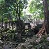 まるで天空の城ラピュタ!雨季にいくべきカンボジア謎の遺跡「ベンメリア」