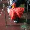 【TDR】ディズニーハロウィーン:初秋の夜雨の準備品!? ~2017年10月Disney旅行記【27】