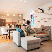 """ステンドグラスに玄関のタイル。4匹の猫たちと静かに暮らせる""""ガウディっぽい""""家"""