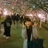桜の写真(*^^*)
