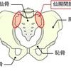 原因不明の腰痛 ①~その原因は仙腸関節にある!?痛みは腰痛にとどまらない?