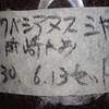 ミヤマクワガタのマット交換(2019 0603)