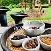 スコータイホテルのスパ・ボタニカ(Spa Botanica)で癒されメニューを体験@タイ, バンコク