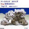 (海水魚)ベースロック Sサイズ お買得(5kg)(形状お任せ) 北海道・九州航空便要保温 沖縄別途送料