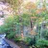 新庄剛志さんが泊まった静岡県伊豆市修禅寺「高級温泉旅館」1泊5万円はどこ?