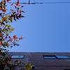 作曲工房 定点観察 2017-01-26(木)穏やかな晴天