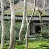源平の人々に出会う旅 第2回「京都・祇王寺」