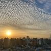 天気と空と:2020-05-11〜05-15