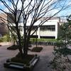 <西東京市議会>田無庁舎敷地に仮設庁舎 保谷庁舎の機能移転で