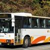 南海りんかんバス 481(南海高野線・鉄道代行バス)