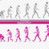 退化か進化か