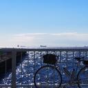 自転車で行ってきた。
