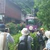 江ノ電と紫陽花で有名御霊神社!タブノキエネルギーのパワースポットでご利益ご朱印