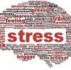 良い教育にはストレスが必要なのか?