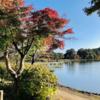 白河・SHOZOカフェ 水辺のコーヒー