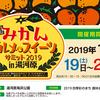 1月19日(土)〜20日(日)みかんグルメ&スイーツサミット2019 in 湯河原