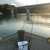 4月12日日向市美々津漁港耳川でカマス釣り^^カマス釣りの野生のプロに弟子入りしました