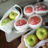 【バスツアーのお得度試算・検証!】桃・ブドウ食べ放題、りんご2個付き日帰りバスツアーに参加してきました