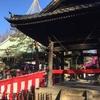 高円寺堀之内妙法寺に初詣と猿回し